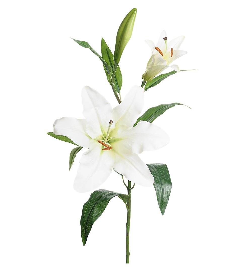 Mr Plant Lilja 70 cm hvit