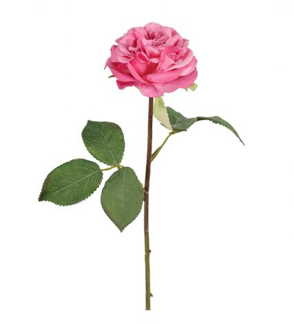 Mr Plant Ros 36 cm Tilbud