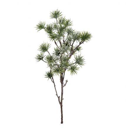 Mr Plant Larch med snø 60 cm