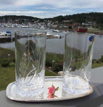 Neman Longdrinkglass / Ølglass Nordic Rose